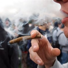 Colorado grants more pot licenses to youth